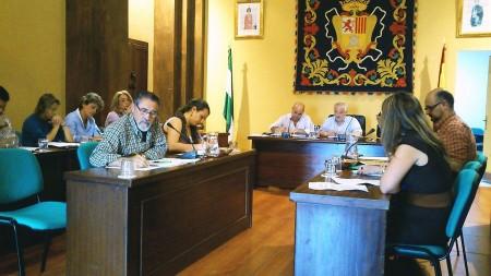 Pleno del Ayuntamiento de Ubrique celebrado el 30 de mayo de 2012.