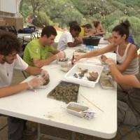 Operaciones de limpieza de restos óseos por parte de voluntarios del campo de trabajo de las excavaciones arqueológicas de las fosas comunes del Marrufo (Foto: Juande).