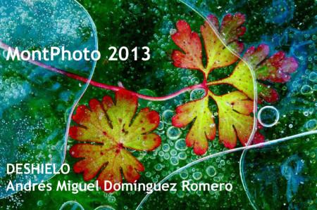 Obra galardonada en MonPhoto 2013