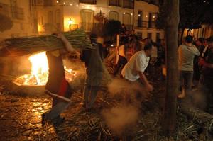 Crijida de gamones en la plaza de la Verdura.
