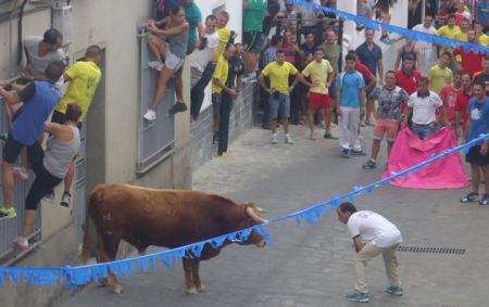 Suelta del primer toro.
