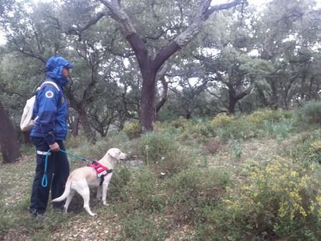El Grupo de Localización y Rescate (Unidad Canina) colabora en la búsqueda.