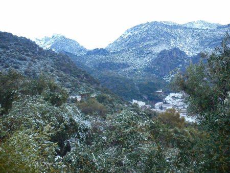 Nieve en los alrededores de Ubrique (Foto: Pedro Bohórquez).