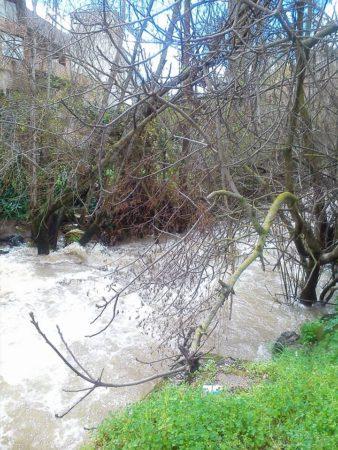 Caudal del río Ubrique el 4 de marzo de 2018.