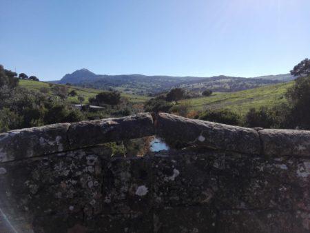 El Puente de la Vega de los Gamonales.