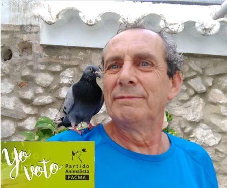 Cartel electoral de Manolo Cabello como candidato de Pacma.