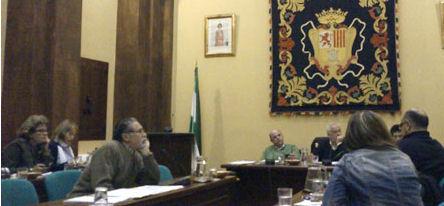 Pleno municipal del 29 de febrero de 2012.