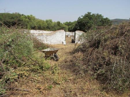 Cementerio de la Sauceda