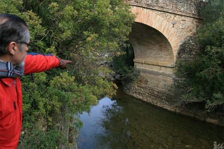 El coordinador local de IU, José García Solano, ante el puente del Realejo.