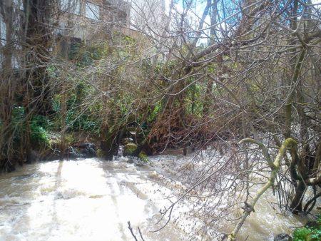 'Cuando el río Ubrique se libera', por Pedro Bohórquez Gutiérrez