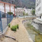 Un ejemplo de deforestación urbana: Ubrique, opinión de Pedro Bohórquez Gutiérrez