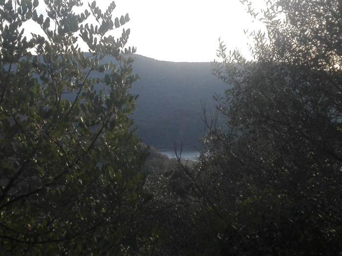 El río se remansa en su lámina creciente de plata oscura.