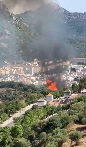 Incendio en los Olivares (Vídeo: Infoca).