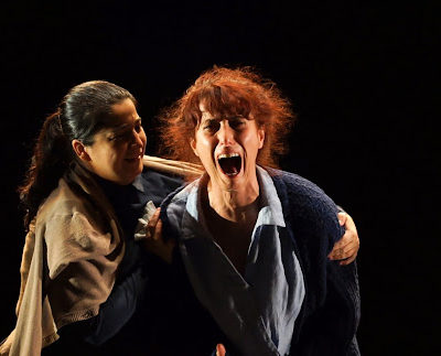 Agotadas las entradas para La vida secreta de Petra Leduc en La Salita de Teatro