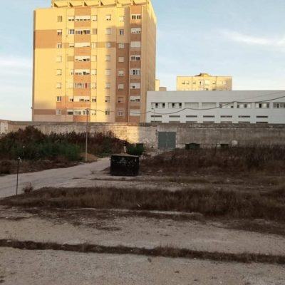 Comienza la exhumación de la fosa sur del cementerio de Cádiz, con dos ubriqueños represaliados por el franquismo